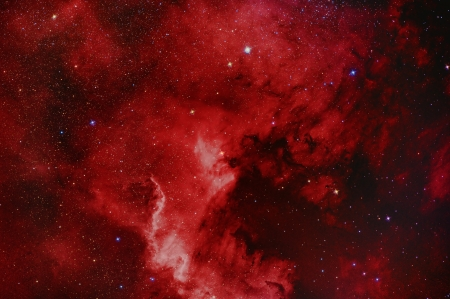 North America Nebula photo
