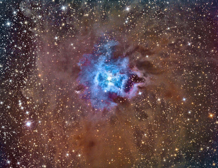 ccd: NGC 7023 Iris Nebula imaged with a telescope and a scientific CCD camera