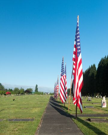 A row of American flags along a walk at a cemetery Stock Photo