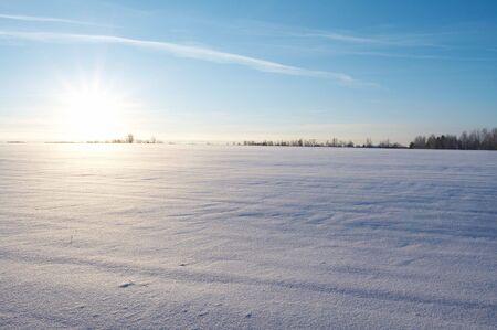 Field under snow in winter, Russia