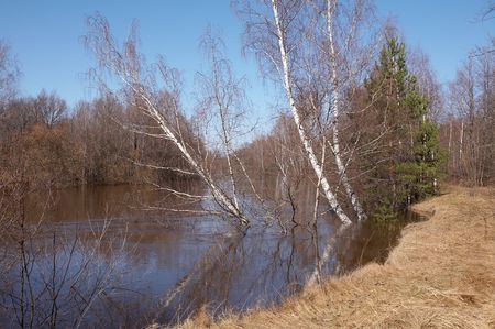Uzola river, Nizhegorodskaya area, Russia