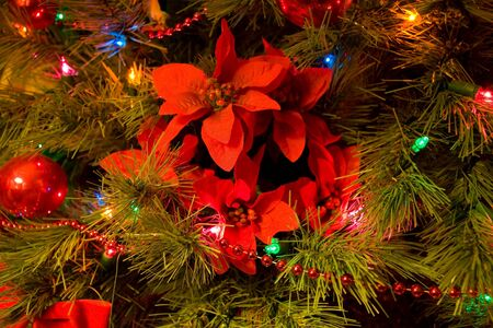 Christmas tree with poinsettia ornament photo