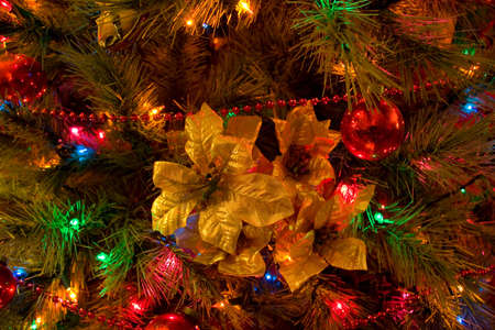 Christmas tree with golden poinsettia ornament photo