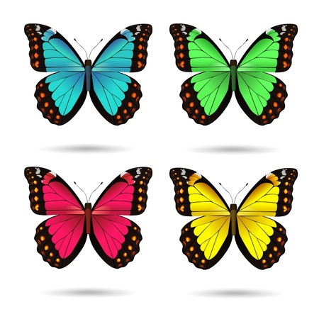 illustration of multicolored butterflies Stock Vector - 11557215