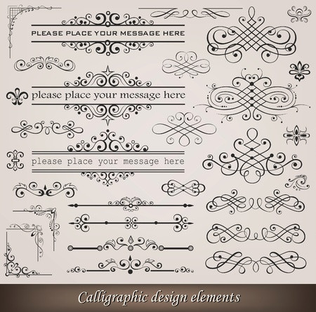 Vector illustration of calligraphic elements and page decoration Vetores