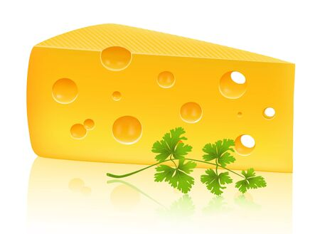 parmesan: Piece of cheese with parsley