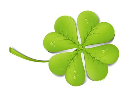 Green clover with drops Vector