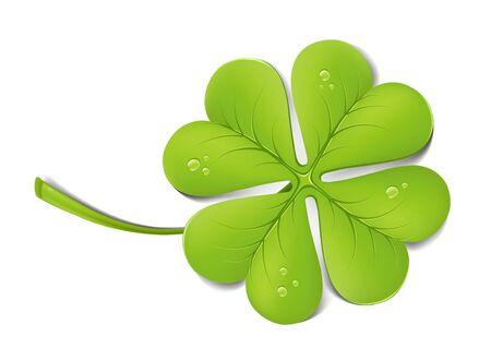 four fourleaf: Trifoglio verde con gocce