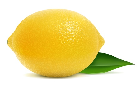 lemon: illustration of fresh lemon