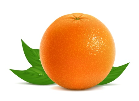 orange peel: illustration of fresh orange with leaves