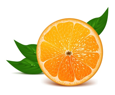 Juicy half of orange with leaves Stock Vector - 15862701