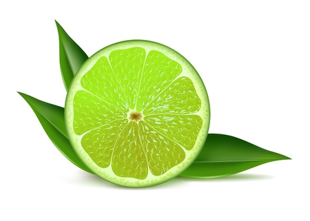 fruited: Juicy fresh half of lime with leaves