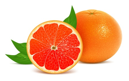 illustration of fresh grapefruits with leaves Illustration