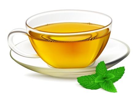 green tea: Cup of tea and mint leaf