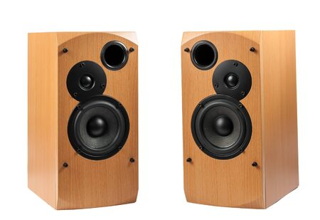 two party system: Speaker isolated on white background. Audio speakers in a wooden case