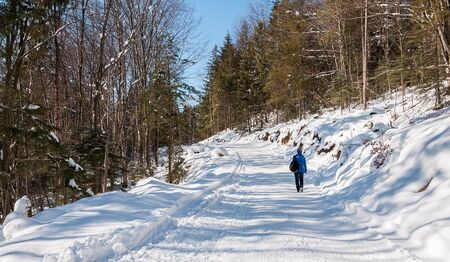 Girl tourist traveling through the winter mountains bright Sunny day. 版權商用圖片