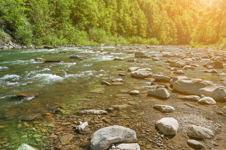 Mountain landscape, forest and fast mountain river. Beautiful scenery with a mountain river. 版權商用圖片