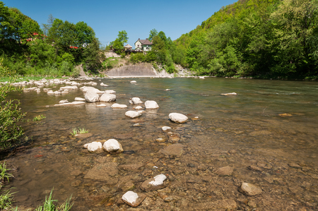 Mountain landscape, forest and fast mountain river. Beautiful scenery with a mountain river 版權商用圖片