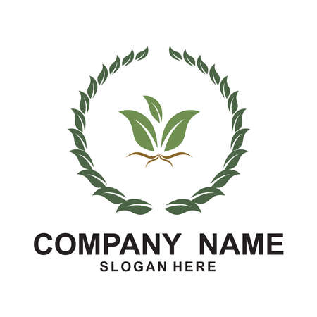 Agriculture Logo Template. Rice plants, and Wheat plants logo design.