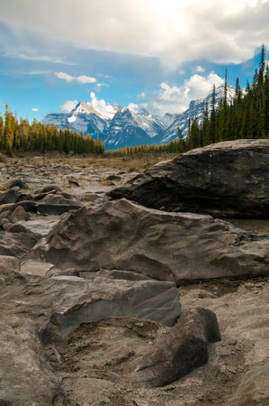 Stones along the riverbank of the Athabasca River in Jasper National Park.