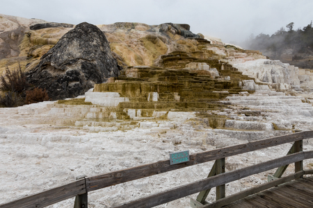 Mineral deposits at Mammoth Hot Springs. Imagens