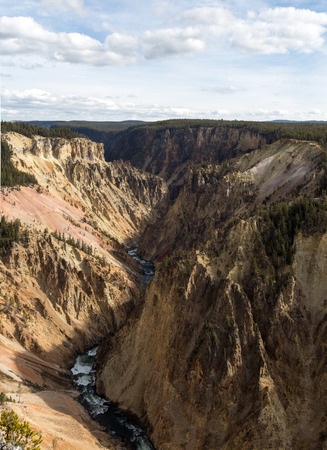 Looking out over the Grand Canyon of Yellowstone from Lookout Point. 版權商用圖片
