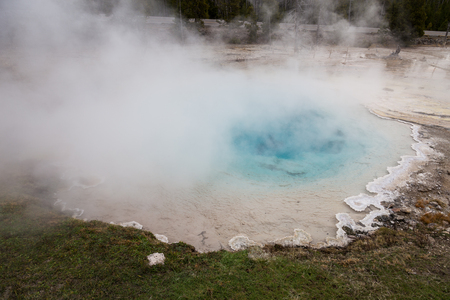 Steam rises from Silex Spring in Yellowstone National Park.