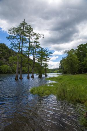 oklahoma: The shoreline of Broken Bow Lake in Beavers Bend State Park, Oklahoma.