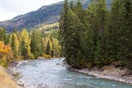 View of Toby Creek near Panorama BC.