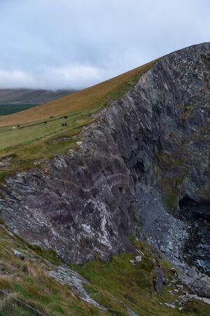 A Cliffs of Kerry Meadow Stok Fotoğraf