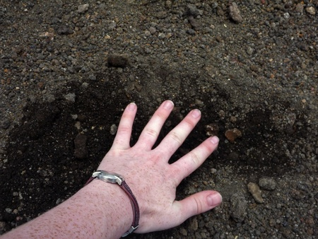 flexed: Woman s hand on rocky volcanic ground Stock Photo