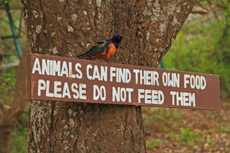 A do not feed the animals sign with a Hildebrandt photo