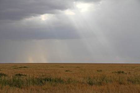 The Serengeti grassland plains with a cloudy sky and rays of sunlight breaking through Stock Photo - 17096677