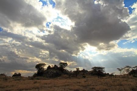 雲の部分を照らす太陽光線のタンザニアのセレンゲティ平野 写真素材