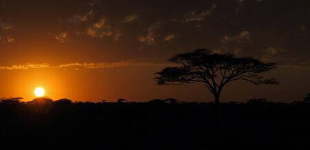 Sunset on the Serengeti plains of Tanzania