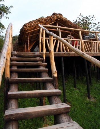 bunyoni: A rugged wooden staircase leading up to a rustic wooden and thatch hotel room built on stilts in the forest