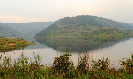 bunyoni: One of the many terraced hills surrounding Lake Bunyoni, in Uganda.