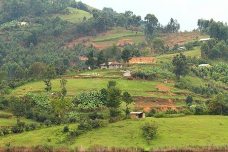 bunyoni: Rural farm communities on Lake Bunyoni, Uganda Stock Photo
