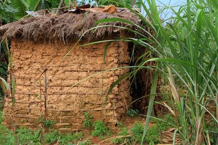 bunyoni: A small mud hut among tropical jungle grasses Stock Photo