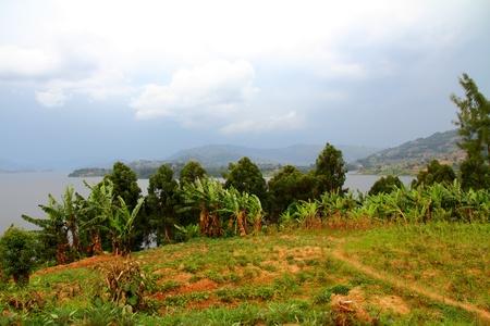 bunyoni: A meadow moving towards the shore of an Island on Lake Bunyoni, Uganda