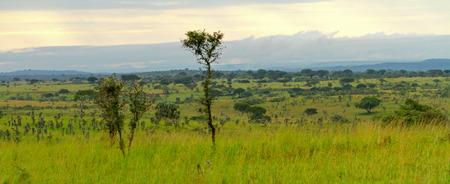 Landscape view through part of Murchison Falls National Park