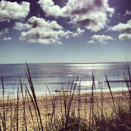 nags: Beach en Carolina del Norte Foto de archivo