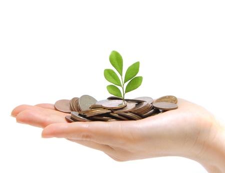 Una mano llena de dinero y la celebración de un árbol
