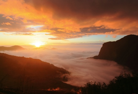 views of the mountains: Amazing sunrise and sea of cloud with mountains and tree