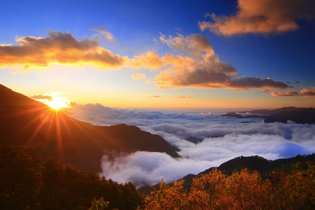 """wschód słońca: Niesamowite wschód sÅ'oÅ""""ca i Morze chmur z góry i drzewa  Zdjęcie Seryjne"""