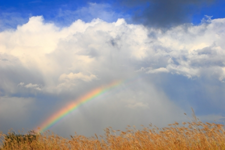 colorful Rainbow with white cloud and sunny sky  photo