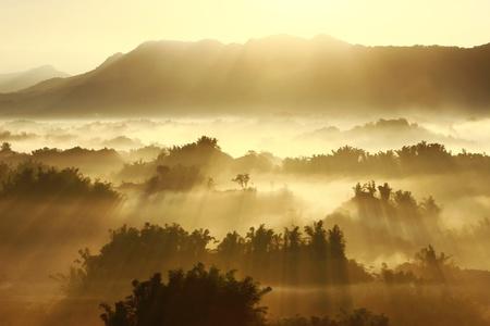 prato montagna: sole sulla nebbia mattutina Archivio Fotografico