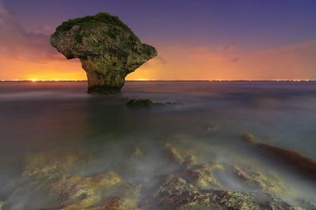 pristine corals:  Beautiful Vase crag Stock Photo