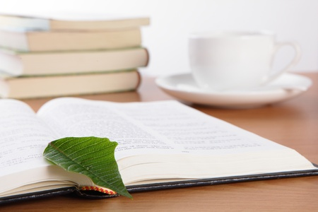 dinning table: Cup book and plant on wooden table