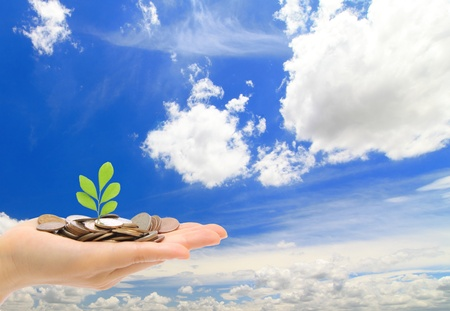 man holding money: Hand ,money and green sapling with blue sky and cloud background, concept for finance Stock Photo